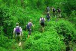 Thailand - Jungle - 2-Daagse Authentieke Trekking Noord-Thailand
